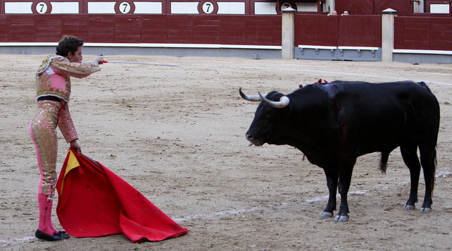 A matador taunting a bull with the red cape