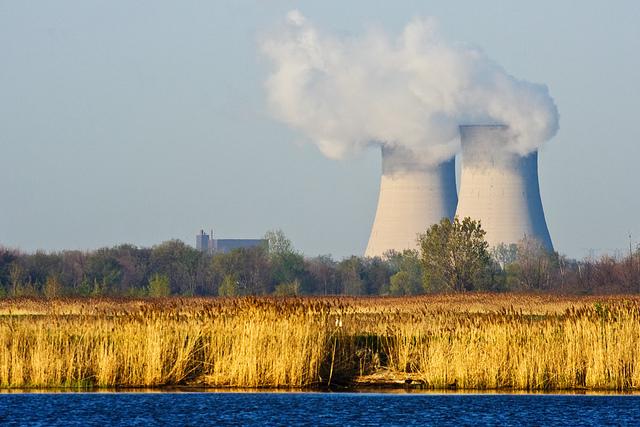 Nuclear Wetlands The Enrico Fermi Nuclear Power Plant Point Mouillee Rockwood, Michigan