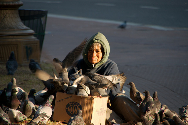 An elderly woman feeding pigeons on the street