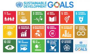 the 17 SDGs