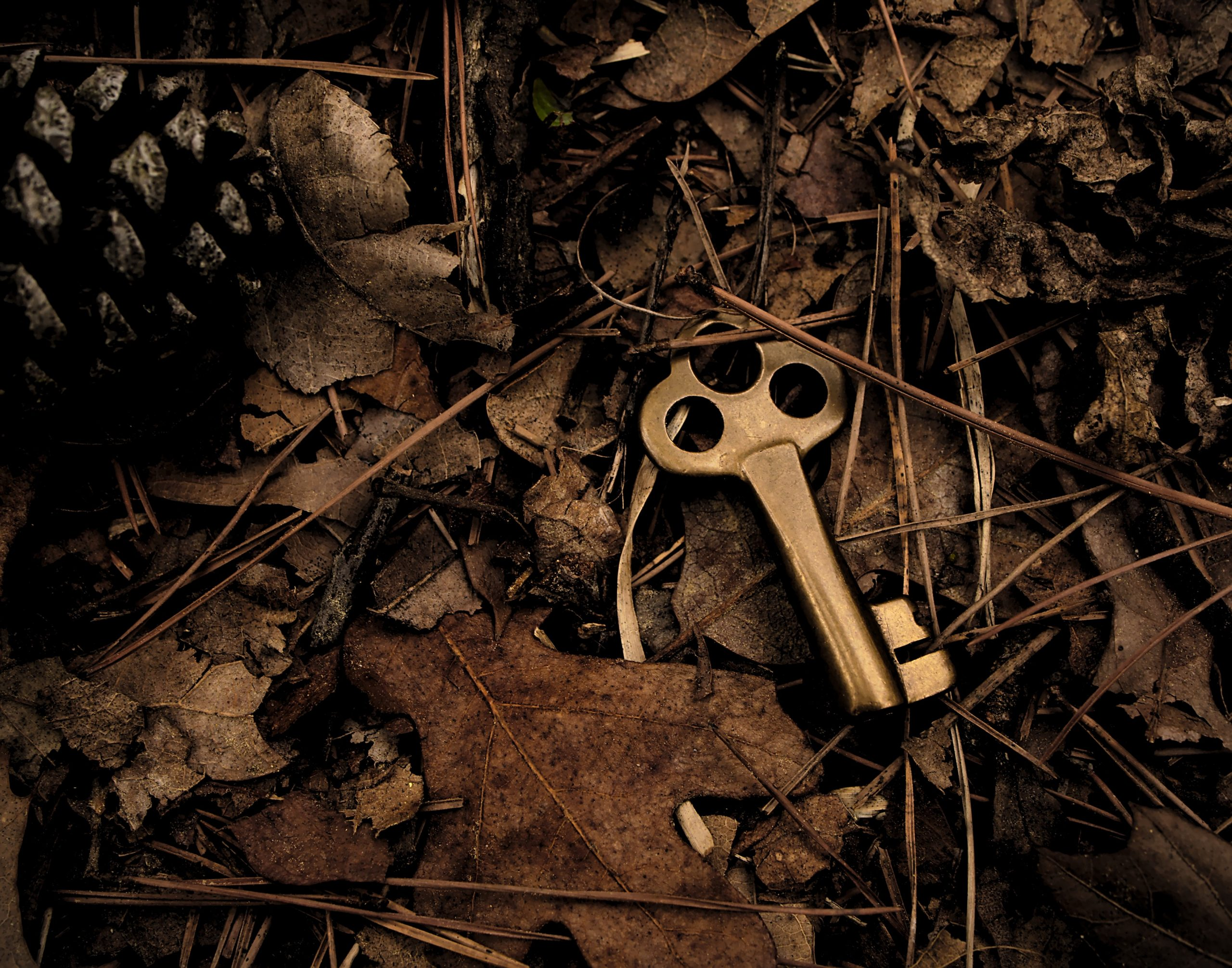 old brass key dropped in leaves in the woods