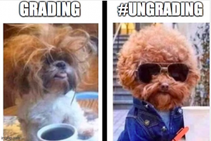 """This image shows two pictures of the same dog. The dog under the title """"Grading"""" is disheveled and stressed. The dog under the title """"#Ungrading"""" is dressed nicely with smooth hair and wearing sunglasses."""