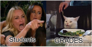 Photo of an angry women pointing with the title Students. Second photo of a cat with Title: Grades
