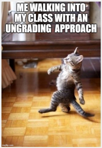 Photo of a confident cat strolling across the room. Title: Me walking into my class with an ungrading approach.