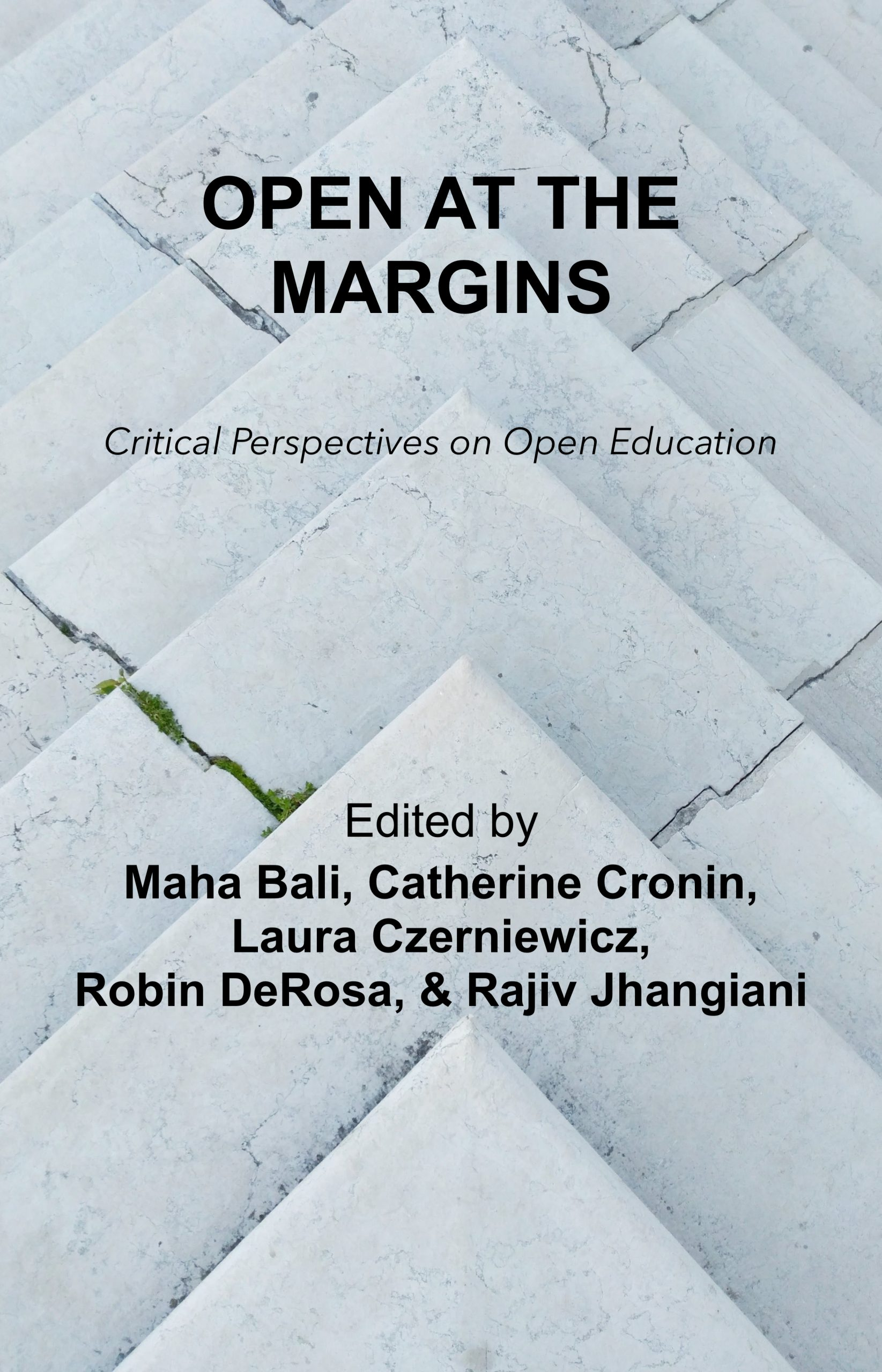 Cover image for Open at the Margins